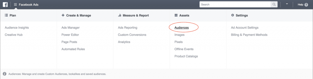 Facebook ads audiences